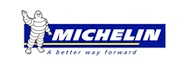 Go to Michelin website